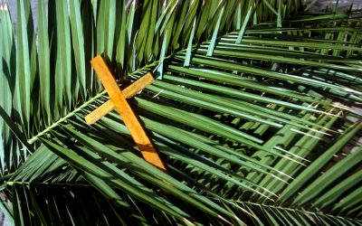 Listen Now – A Strange Parade – Matthew 21: 1-11