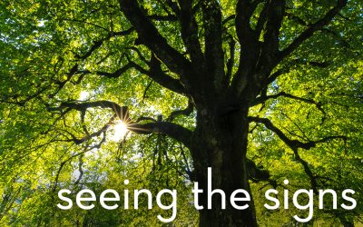 Listen Now – Seeing The Signs – Luke 21:25-35